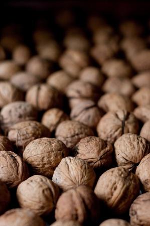 Walnuts Stock Photo - 8591557