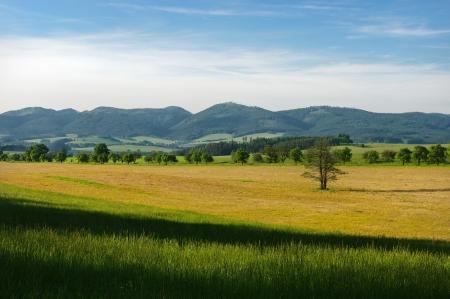 Hills scenery Banque d'images