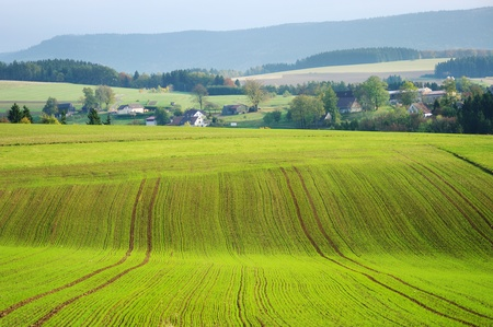 Agricultural view on fields and village photo