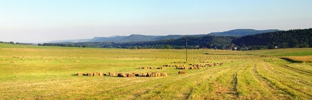 Agricultural panorama in the hills Stock Photo - 9031354