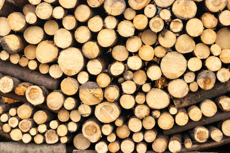 Texture of fireplace wood pile photo