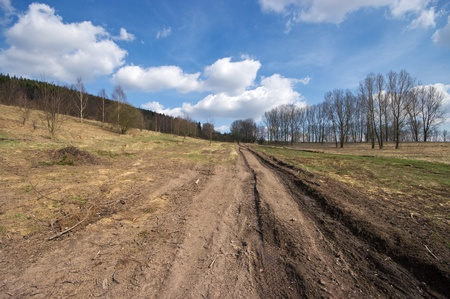 Muddy road during the spring photo
