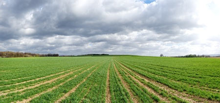 Agricultural panorama with dramatic sky photo