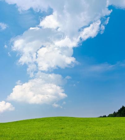 cielos abiertos: Escena con cielo azul y Verde Prado Foto de archivo