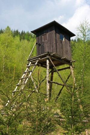Hunting tower in the forest photo