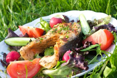 Salmon served on grass surface photo