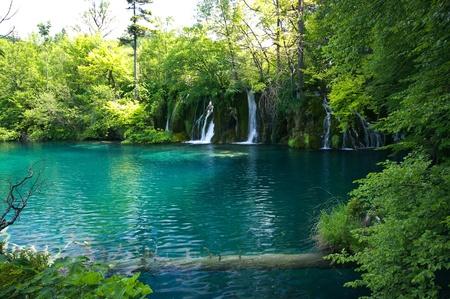 Beautiful lake in forest, Plitvice, Croatia photo
