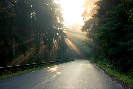 Sunbeams over the road Standard-Bild