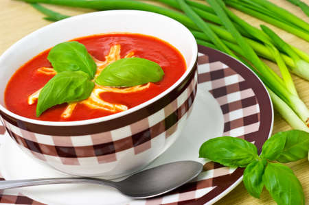 Traditional tomato soup in the bowl Stock Photo - 12204158