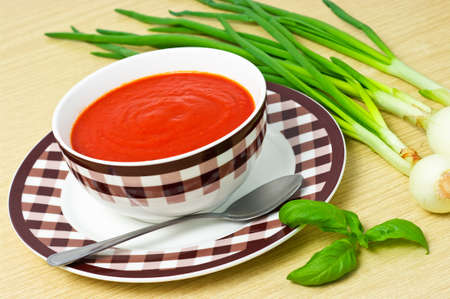 Traditional tomato soup in the bowl Stock Photo - 12204214