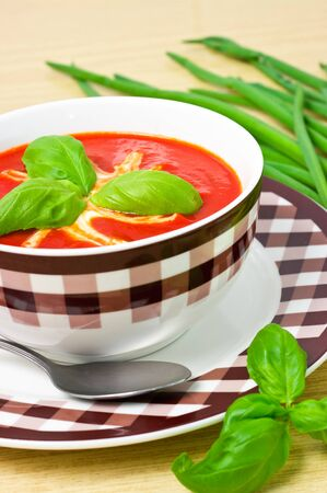 Traditional tomato soup in the bowl Stock Photo - 12204206