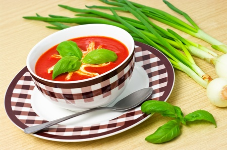 Traditional tomato soup in the bowl Stock Photo - 12701979