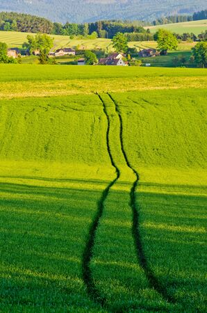 Agricultural scenery with the trace of the tractor photo