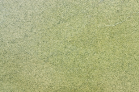 Pastel green paper texture for background Stock Photo - 14607156