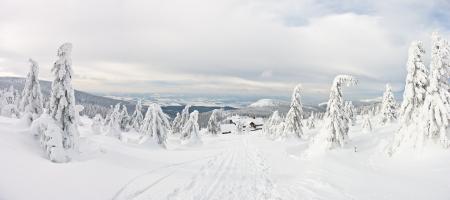 Panorama on the Snieznik Mountain slope, Poland Standard-Bild