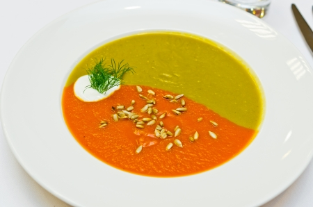 Creamy two colored soup made for vegetables Stock Photo - 17113334