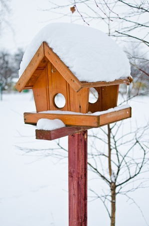 Bird feeder in the park during the cold winter photo