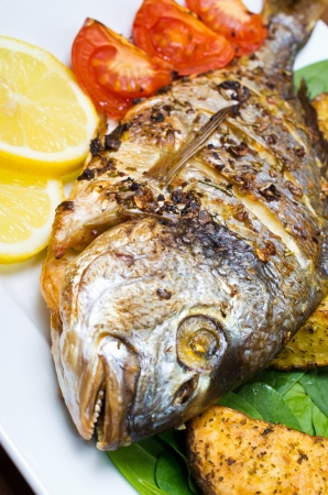 Roasted gilthead fish with baked potatoes Stock Photo - 18167200