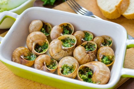 Bourgogne snails with garlic butter