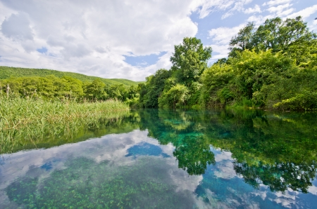 Black Drin river and its springs near Ohrid, Macedonia photo