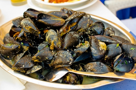 Delicious mussels in the bowl Stok Fotoğraf