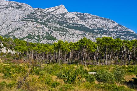 Mountains in Biokovo park, Riviera Makarska, Croatia photo
