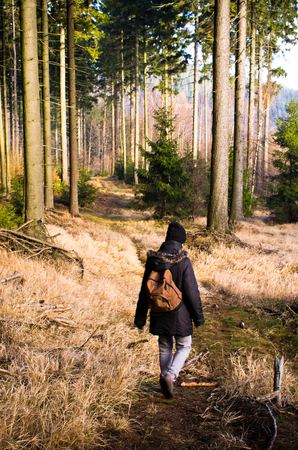 Woman during the hiking in forest photo