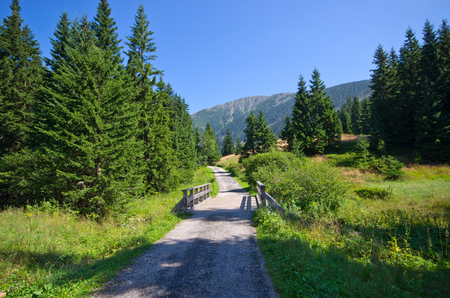 Little wooden bridge and path in Carpathian mountains, Czech Republic Stock Photo