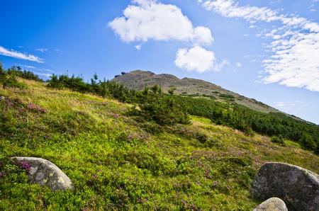 Beautyful Snezka mountain - highest in Czech Republic