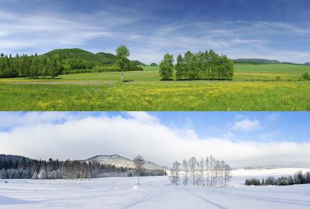 Porovnání 2 sezóny - zimní a letní Reklamní fotografie