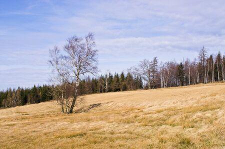 gory: L'inizio della primavera in montagna Gory Walbrzyskie, Polonia Archivio Fotografico
