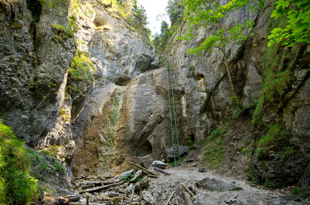 slovak: Cliff with long ladder in Slovak Paradise Stock Photo