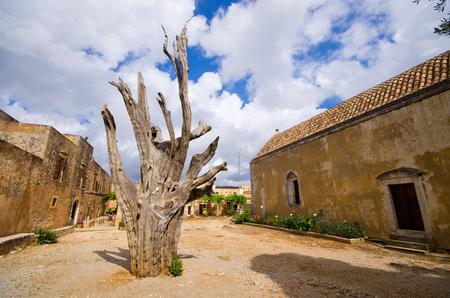 arkady: Old tree with bullet - Moni Arkadiou monastery on Crete, Greece