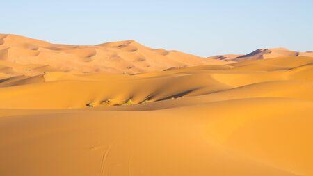 sahara: Part of Sahara desert in Morocco