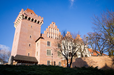 The castle of Poznan - Poland Stock Photo