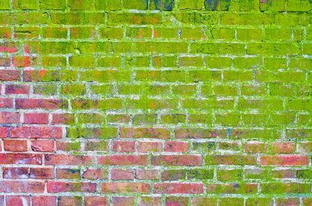 Mossy brick wall for background Stock Photo