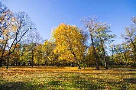 Lazienki park in Warsaw - Poland