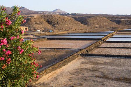 Famous Salinas of Lanzarote island - Spain