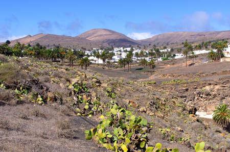 Famous Haria village on Lanzarote Island - Spain