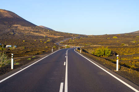 Typical volcanic vineyards in Lanzarote Island - Spain Stok Fotoğraf