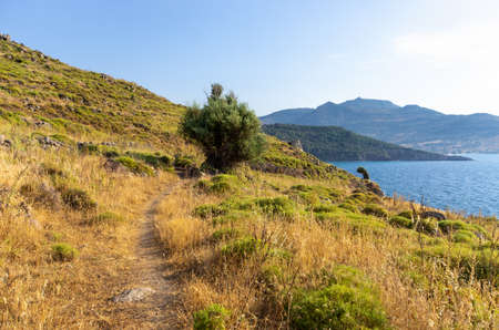 Scenic seashore on one of greek islands, Lesbos Stok Fotoğraf - 157386384