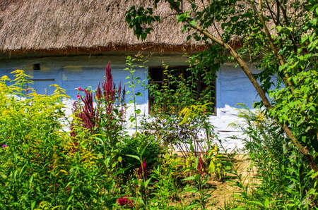Old traditional wooden cottage and garden