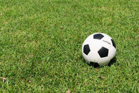 futsal: The futsal ball on the grass