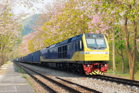 thru: The train with container thru tabak flowers in Thailand