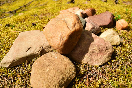 Bunch of stones lying on green grass. Close up.