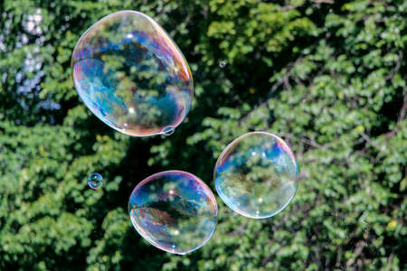 colorful soap bubbles in air
