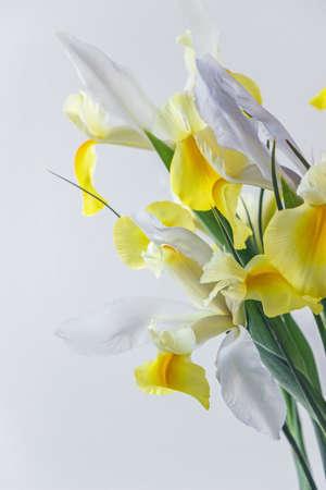 white yellow iris flower in vase