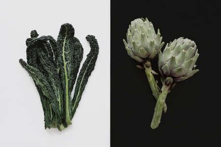 fresh artichoke and kale leaf Reklamní fotografie