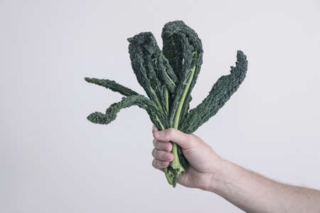 holding green kale leaves in hand Reklamní fotografie