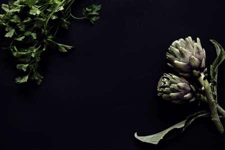 food dish on dark background